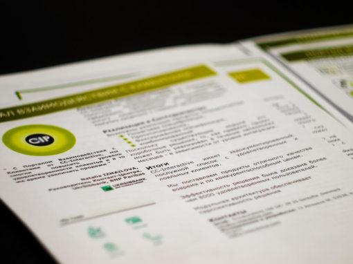 Разработка фирменного стиля организации и логотипов для датской компании CC-Interactive